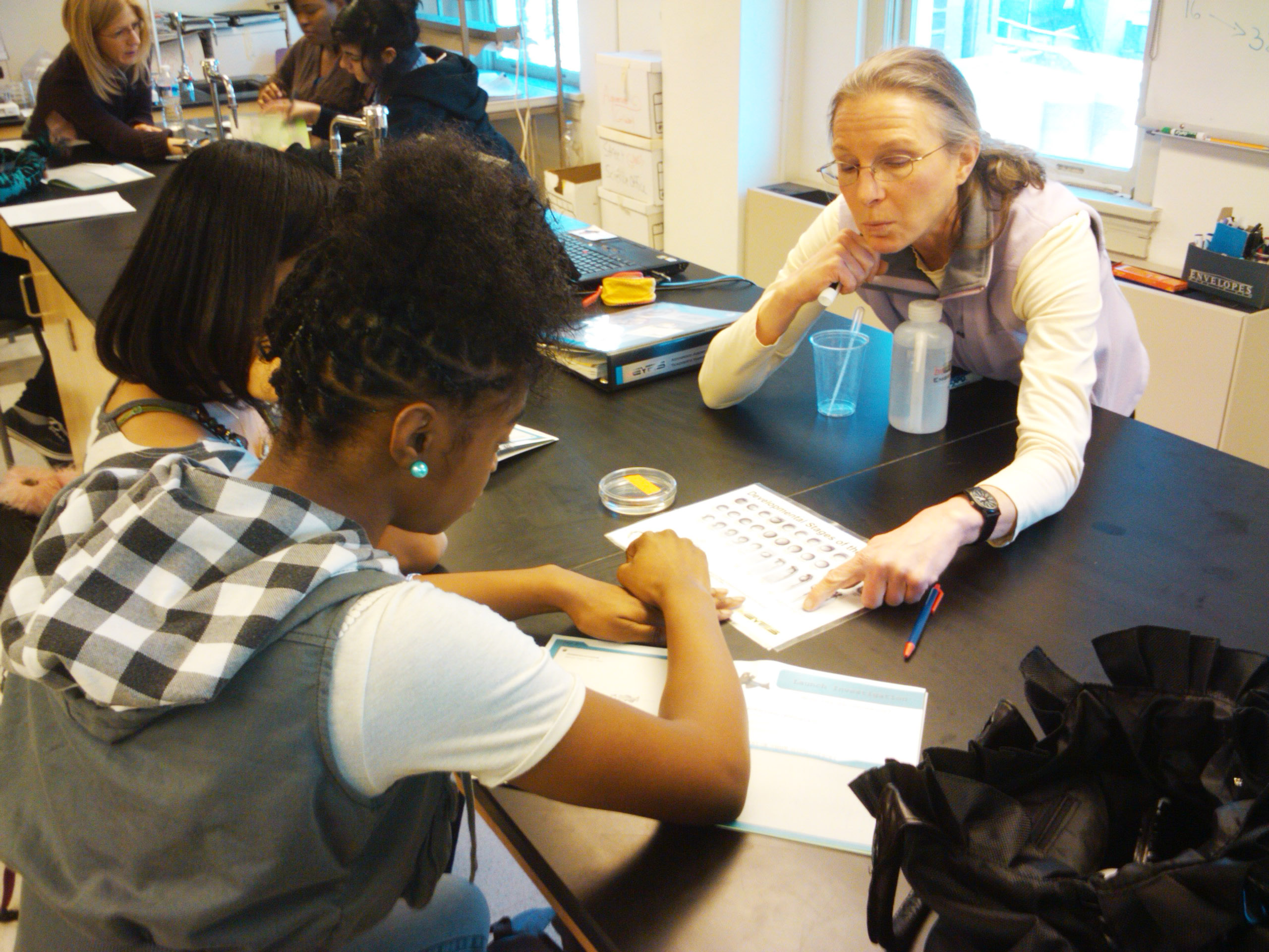 BioEYES Model Teacher Nancy Street helps her students identify the developmental stage of their embryos.
